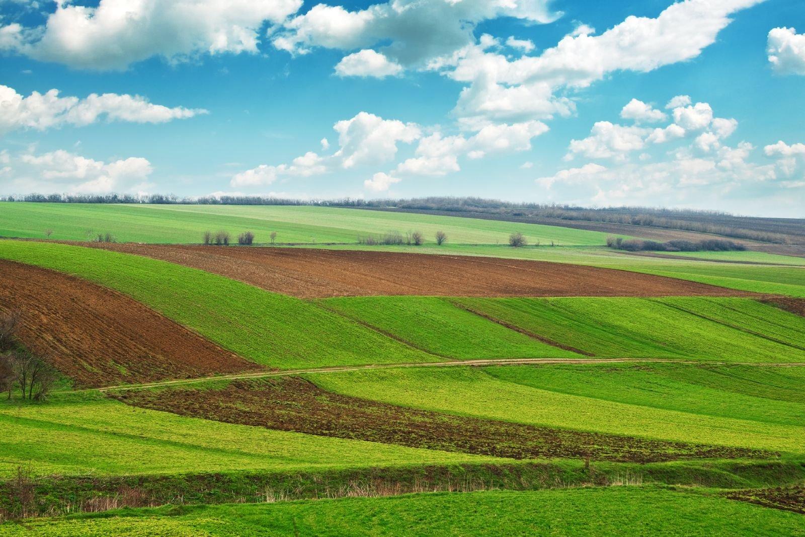 земля в аренду под сельское хозяйство екатеринбург Что-то